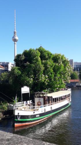 MS Vera am Anleger Historischer Hafen Berlin